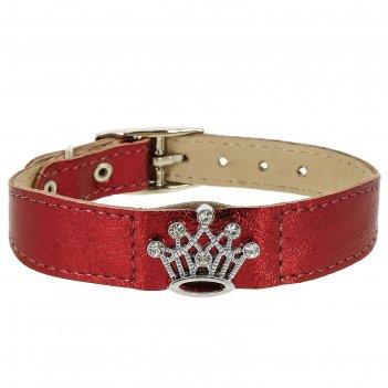 Ошейник кожаный флер украшенный корона со стразами, ош 20-24 х 1,2 см, мик