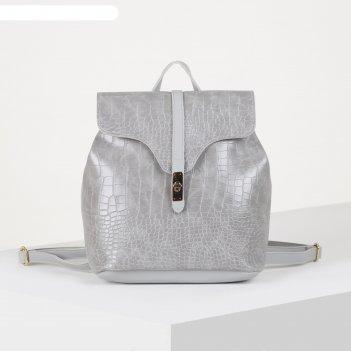 Рюкзак молод нина, 24*11*30, отд на молнии, серый