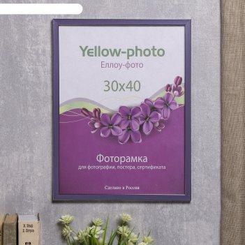 Фоторамка пластик еллоу фото 30x40 см 286-15 акварель лиловый