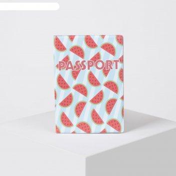 Обложка для паспорта 9,5*0,5*13,5см, арбузы, голубой