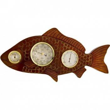 Метеостанция рыба