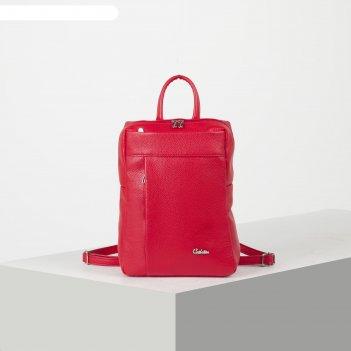 Сумка-рюкзак женская, отдел на молнии, 2 наружных кармана, цвет красный