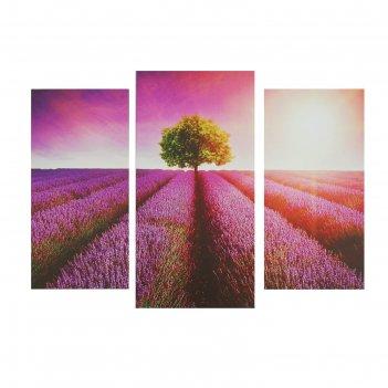Модульная картина на подрамнике дерево в лавандовом поле