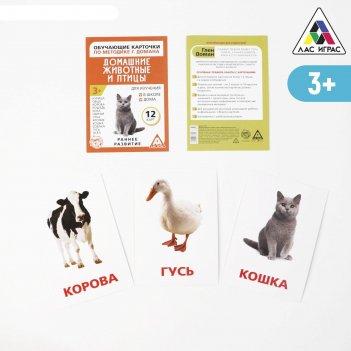 Обучающие карточки по методике г. домана «домашние животные и птицы»