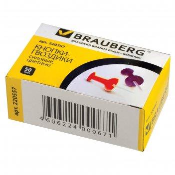 Кнопки силовые цветные, 50 штук, в картонной коробке