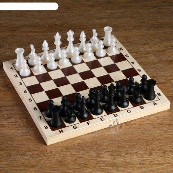 Фигуры шахматные обиходные пластиковые  (король h=7.2 см, пешка 4 см)