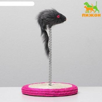 Дразлилка для кошек мышь на сизалевой подставке, 12 х 24 см, микс цветов