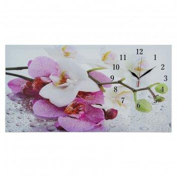 Часы настенные, серия: цветы, на холсте орхидеи, 40х76  см, микс