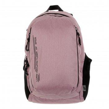 Рюкзак молодёжный с эргономичной спинкой, luris «тейди», 44 х 28 х 18 см,