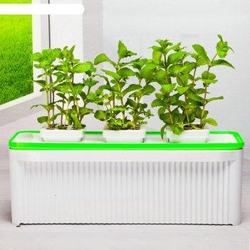 Гидропонная установка hobbyfarm 3 ячейки