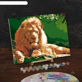 Картина по номерам на холсте лев, 40*30 см