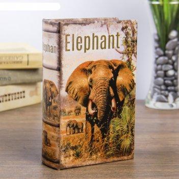 Сейф-книга дерево слон в африке кожзам 17х11х5 см