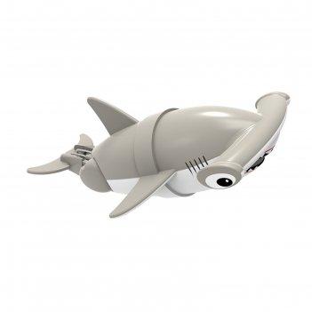 Акула-акробат хэмми, 12 см