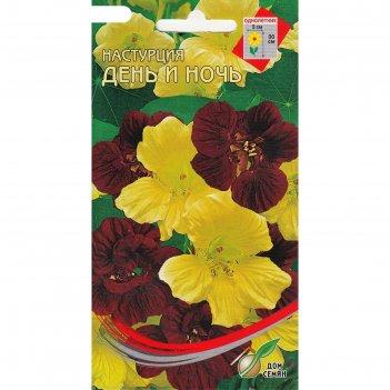 Семена цветов настурция день и ночь дом семян, о, 8 шт