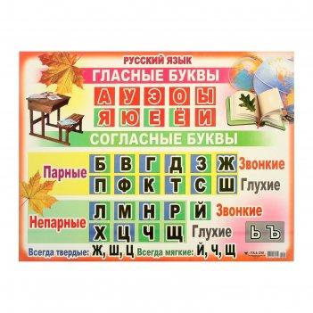 Плакат а2 гласные и согласные буквы