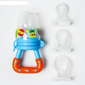 Соска для прикорма фруктики в наборе с силиконовыми сеточками 2шт