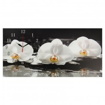 Часы настенные на холсте белые орхидеи, 40х76 см