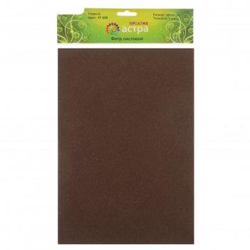 Фетр листовой астра, 1 мм 180гр 20х30 см (набор 10 листов) (yf 690 коричне
