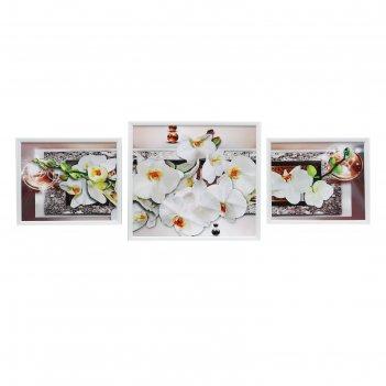 Модульная картина белая орхидея 30*25-2, 39*35-1, 35х100 см