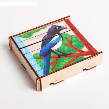 Пазл-палочки «птички»