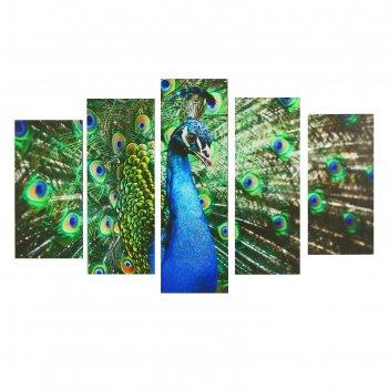 Модульная картина на подрамнике павлин, 80x140 см
