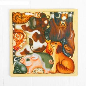 Развивающий пазл-головолока домашние животные, вид упаковки: термоусадочна