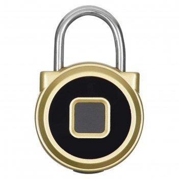 Умный замок digma smartlock r1, навесной, разбл.отпеч.пальца, 100мач, золо