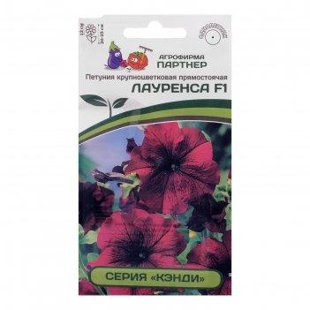 Семена цветов петуния лауренса, f1,  прямостоячая,  бургунди,
