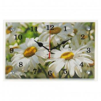 Часы настенные, серия: цветы, ромашки, 20х30  см, микс