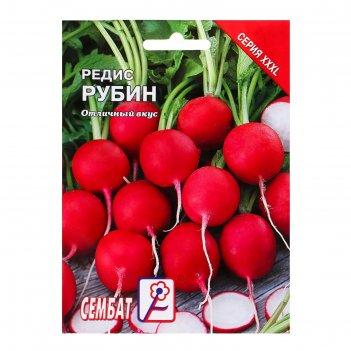 Семена хххl редис рубин, 20 г