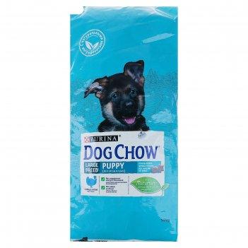 Сухой корм dog chow puppy large breed для щенков крупных пород, индейка, 1