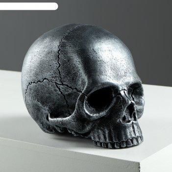 Копилка череп №3 серебро
