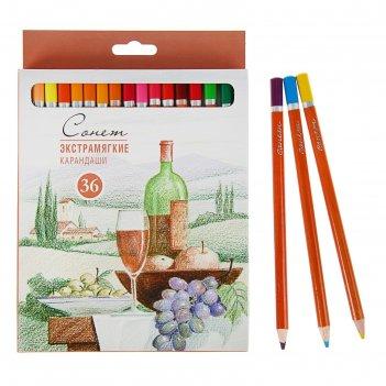 Карандаши художественные цветные мягкие «сонет», 36 цветов