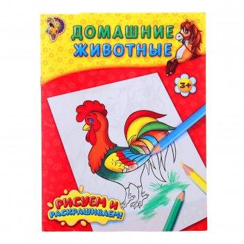 Книжка-раскраска домашние животные