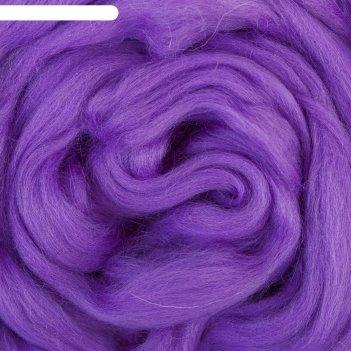 Шерсть для валяния (060 фиолетовый), 50 г