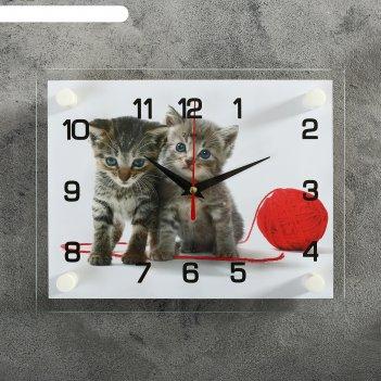 Часы настенные, серия: животный мир, котята с клубком, 20х26  см, микс