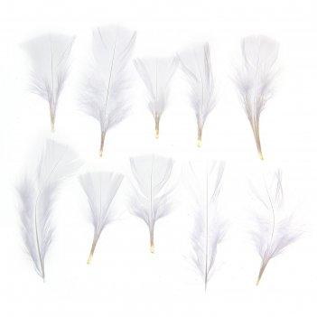 Набор перьев для декора 10 шт, размер 1 шт 10*4 цвет белый