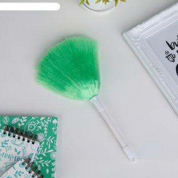 Щетка для удаления пыли, 25 см цвета микс
