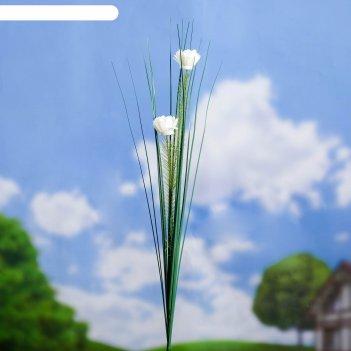 Штекер садовый цветы 75*3*3 см