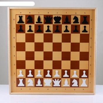 Шахматы и шашки демонстрационные магнитные 73х73х3.5 см