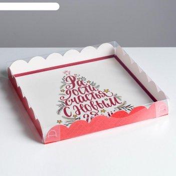 Коробка для кондитерских изделий с pvc крышкой «радости», 21 x 21 x 3 см