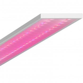 Светодиодный фитосветильник geniled лпо agro, 120x18x4.5 см, 60 вт, микроп