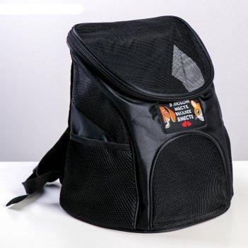 Рюкзак для переноски животных в любом месте - веселее вместе 31*23*30 см