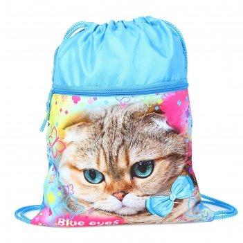 Мешок для обуви с карманом 420*330 оникс мо-20-2, дев голубоглазая кошка г