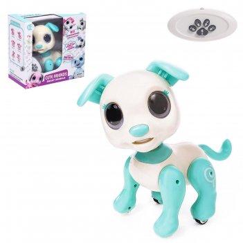 Робот-питомец радиоуправляемый собака, световые и звуковые эффекты, цвет б
