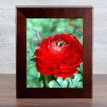 Ключница серия стандарт красные цветы (венге)