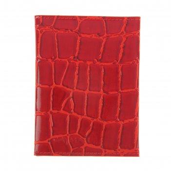 Обложка для документов, красный скат