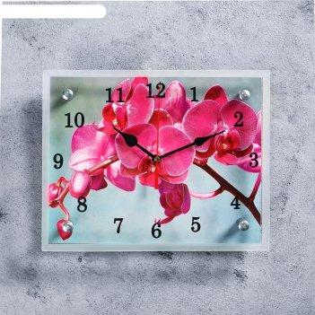 Часы настенные, серия: цветы, розовая орхидея, 20х25  см, микс
