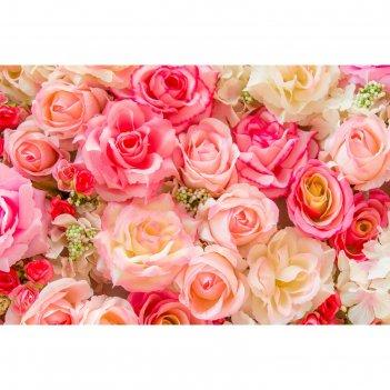 Фотобаннер 300 х 200 см, с фотопечатью розы