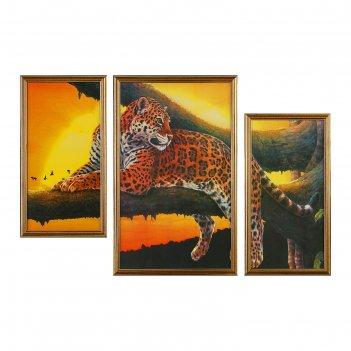 Картина модульная гепард на дереве 50х70 см
